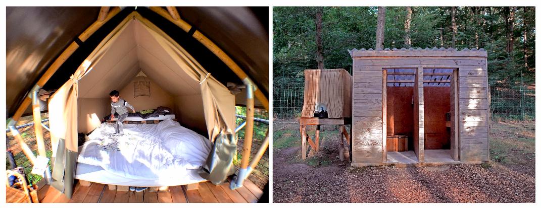 Tree-Tents6-1